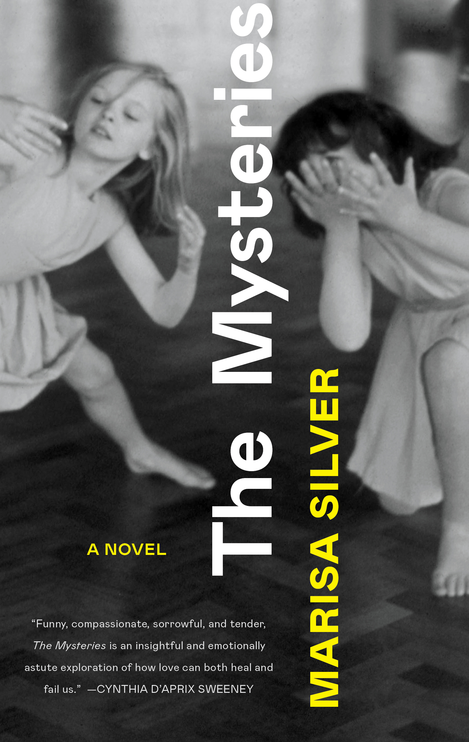 Book cover for The Mysteries